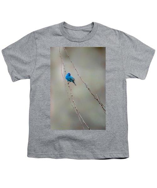 Indigo Bunting Youth T-Shirt by Bill Wakeley