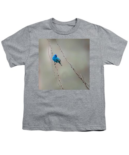Indigo Bunting Square Youth T-Shirt by Bill Wakeley