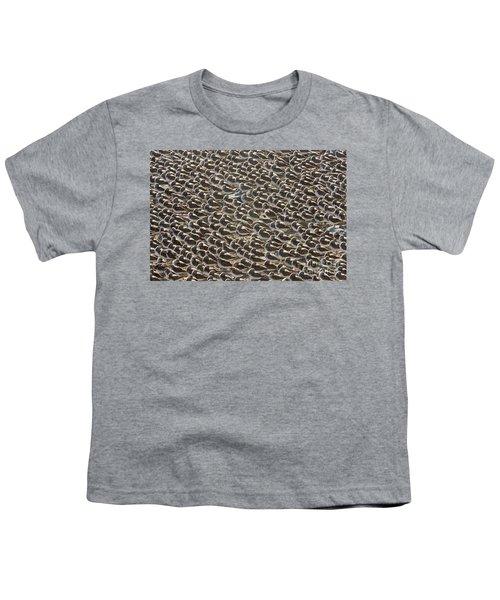 Semipalmated Sandpipers Sleeping Youth T-Shirt by Yva Momatiuk John Eastcott