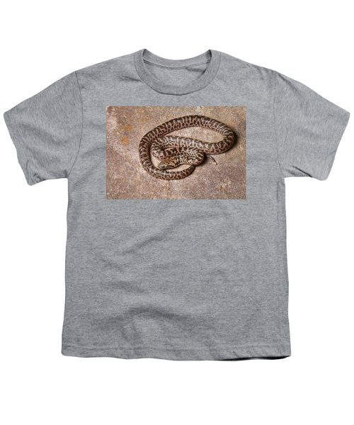 Spotted Python Antaresia Maculosa Youth T-Shirt