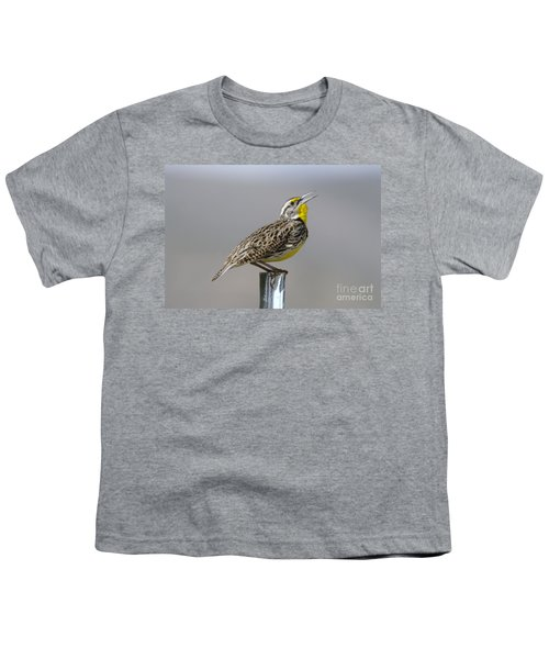 The Meadowlark Sings  Youth T-Shirt