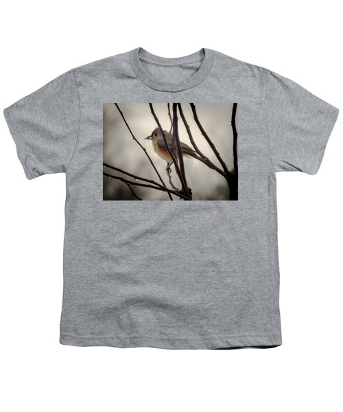Tufted Titmouse Youth T-Shirt by Karen Wiles