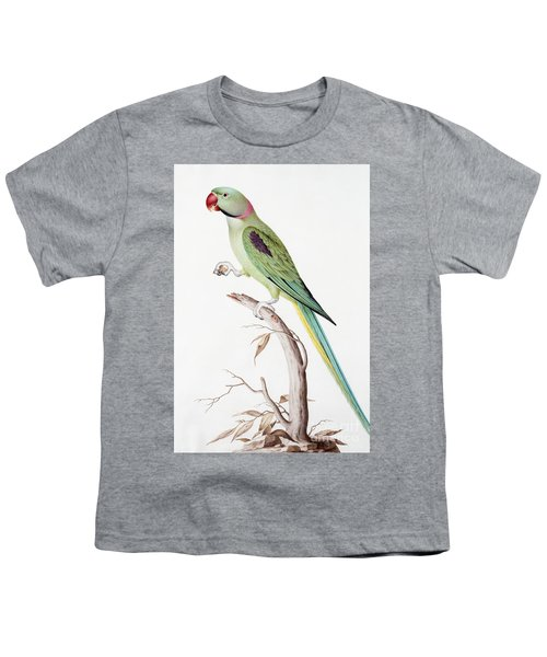 Alexandrine Parakeet Youth T-Shirt by Nicolas Robert