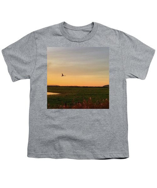 Another Iphone Shot Of The Swan Flying Youth T-Shirt