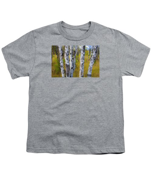 Youth T-Shirt featuring the photograph Aspens by Gary Lengyel