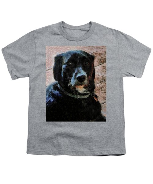 Black Dog Worry Highlights Youth T-Shirt