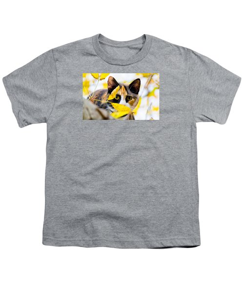 Cat On The Prowl Youth T-Shirt by Jonny D