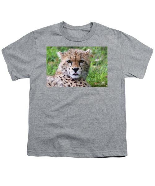 Youth T-Shirt featuring the photograph Cheetah by MGL Meiklejohn Graphics Licensing