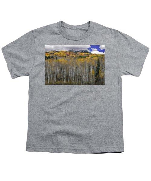 Colorado Splendor Youth T-Shirt by Gary Lengyel