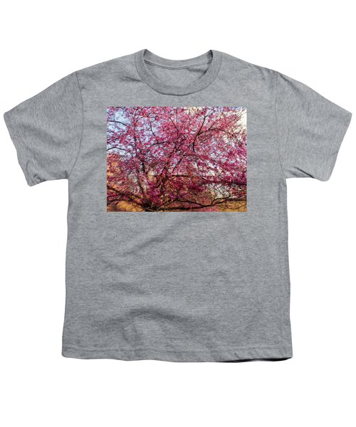Columnar Sargent Cherry 1 Youth T-Shirt