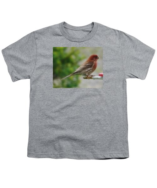 Crossbill Male      Spring      Indiana Youth T-Shirt