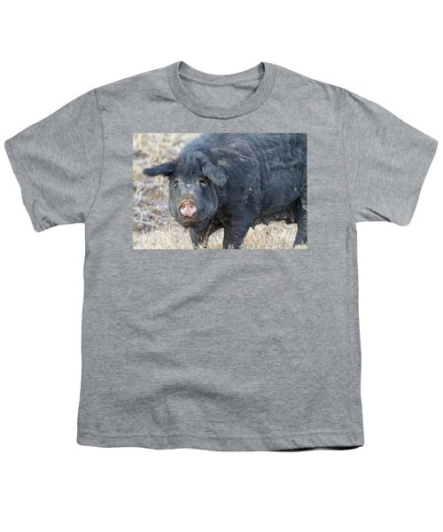 Youth T-Shirt featuring the photograph Female Hog by James BO Insogna