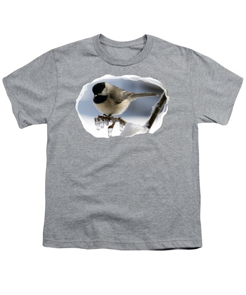 Icicle Perch Youth T-Shirt by Karen Beasley