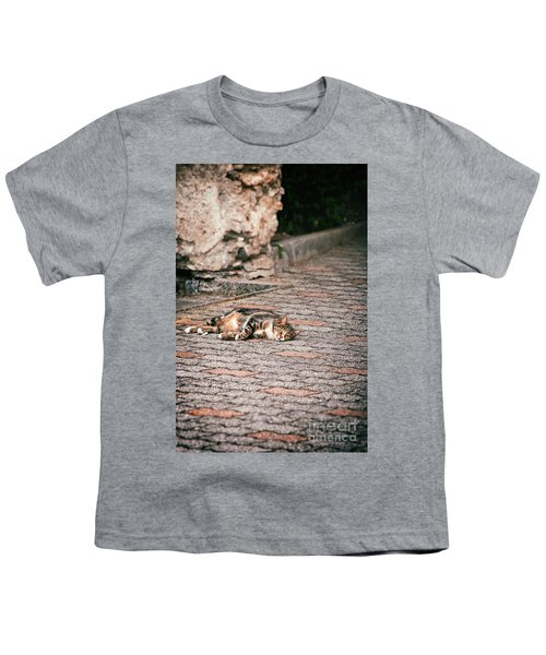 Youth T-Shirt featuring the photograph Lazy Cat    by Silvia Ganora