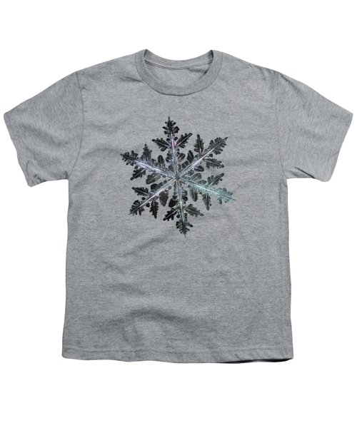 Leaves Of Ice, Panoramic Version Youth T-Shirt