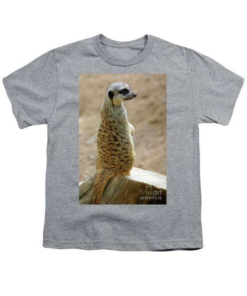 Meerkat Portrait Youth T-Shirt by Carlos Caetano