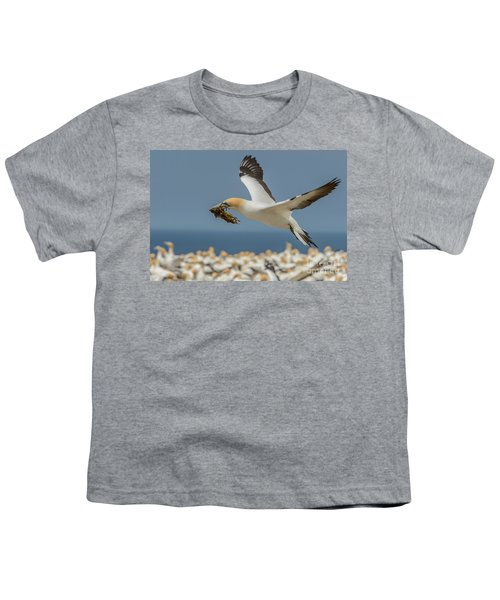 Nest Building Youth T-Shirt