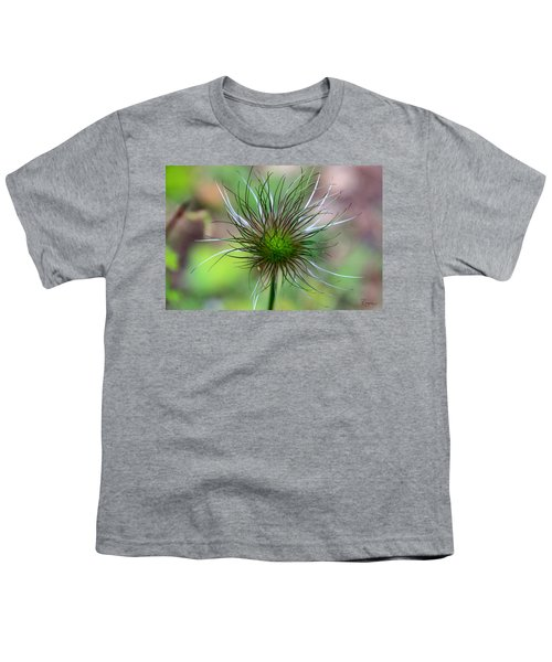 Pasque Fluff Youth T-Shirt