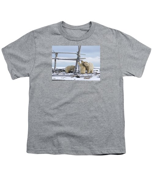 Playtime In The Arctic Youth T-Shirt
