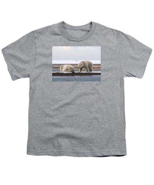 Polar Bear Zzzzzzz's Youth T-Shirt