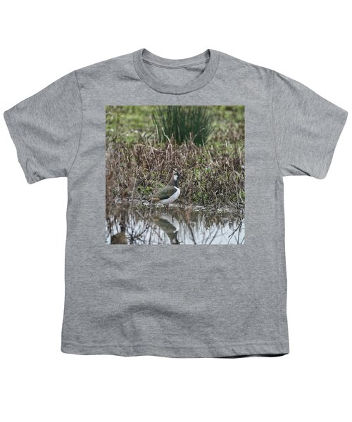 Portrait Of Beautiful Lapwing Bird Seen Through Reeds On Side Of Youth T-Shirt by Matthew Gibson
