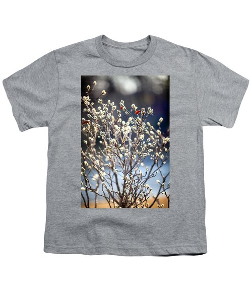 Pussy Willow Youth T-Shirt