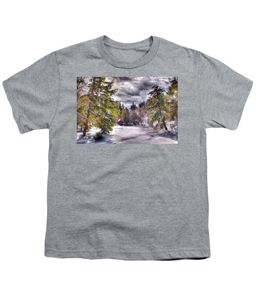 Youth T-Shirt featuring the photograph Red Boathouse After The Storm by David Patterson