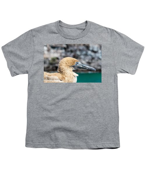 Red Footed Booby Juvenile Youth T-Shirt by Jess Kraft