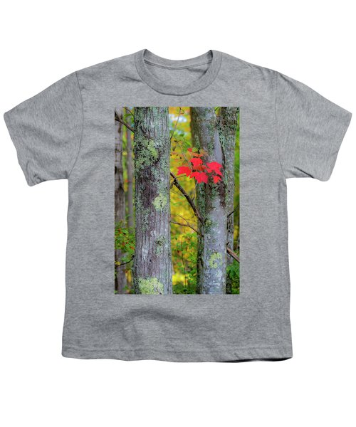 Red Leaves Youth T-Shirt