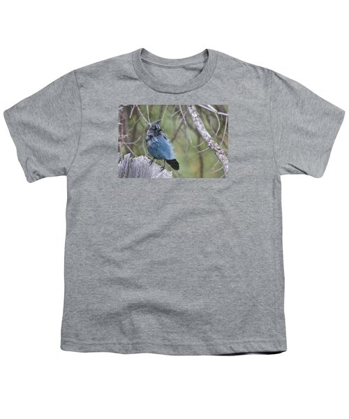 Youth T-Shirt featuring the photograph Stellar's Jay by Gary Lengyel