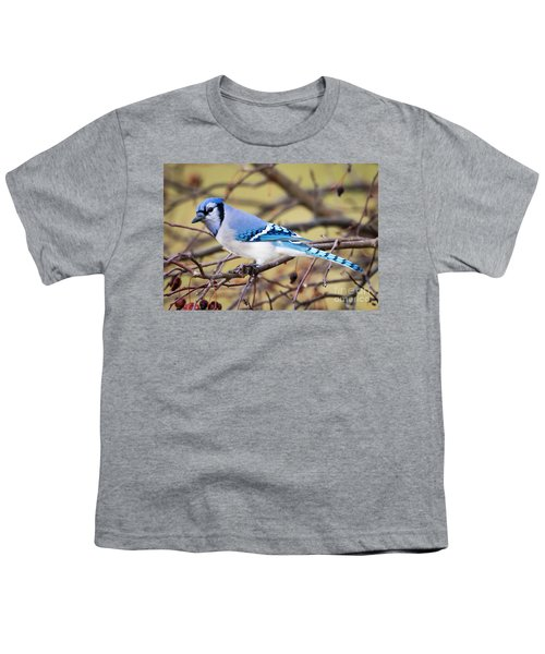 The Winter Blue Jay  Youth T-Shirt by Ricky L Jones