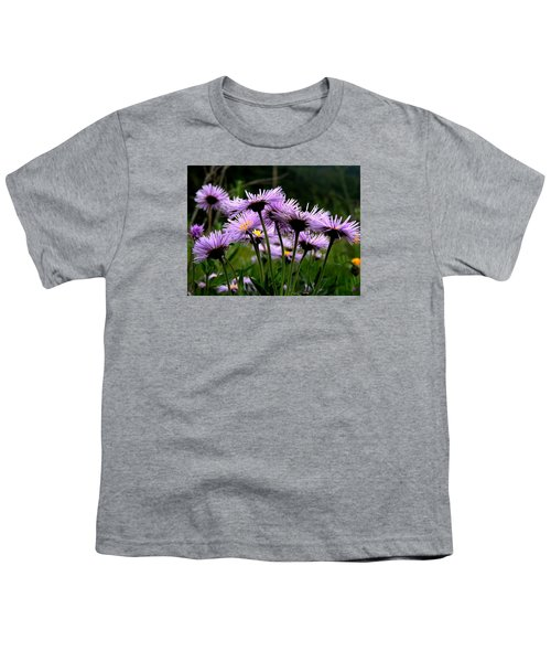 Wild Mountain Asters Youth T-Shirt