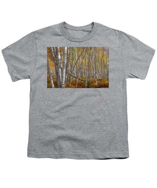 Youth T-Shirt featuring the photograph Colorful Stick Forest by James BO Insogna