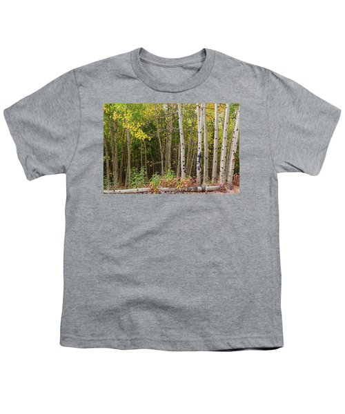 Youth T-Shirt featuring the photograph Nature Fallen by James BO Insogna