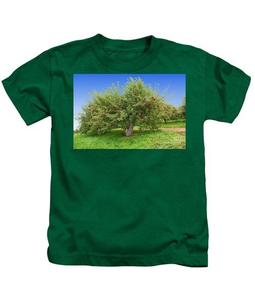 Large Apple Tree Kids T-Shirt