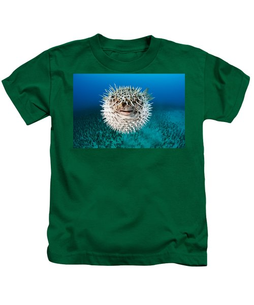 Spotted Porcupinefish Kids T-Shirt