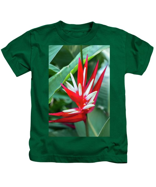 Red And White Birds Of Paradise Kids T-Shirt