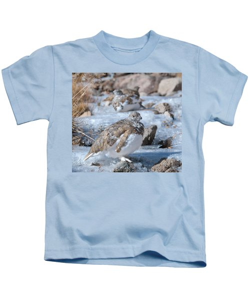 Autumn Plumage White-tailed Ptarmigan Kids T-Shirt