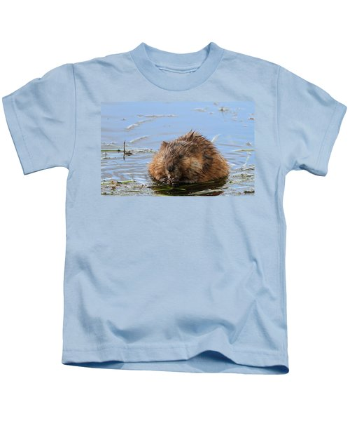 Beaver Portrait Kids T-Shirt by Dan Sproul