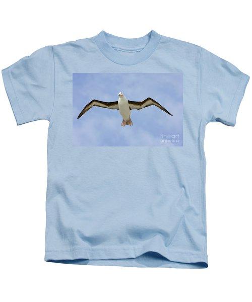 Black-browed Albatross Flying Kids T-Shirt by Yva Momatiuk John Eastcott