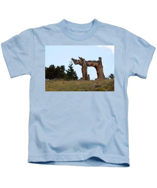 Pi In The Sky Kids T-Shirt