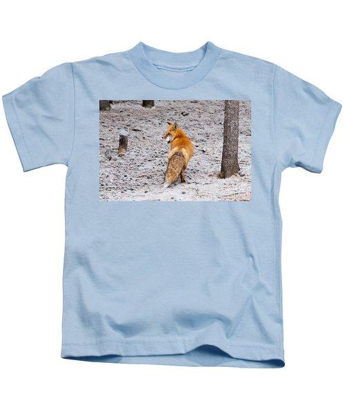 Red Fox Egg Thief Kids T-Shirt