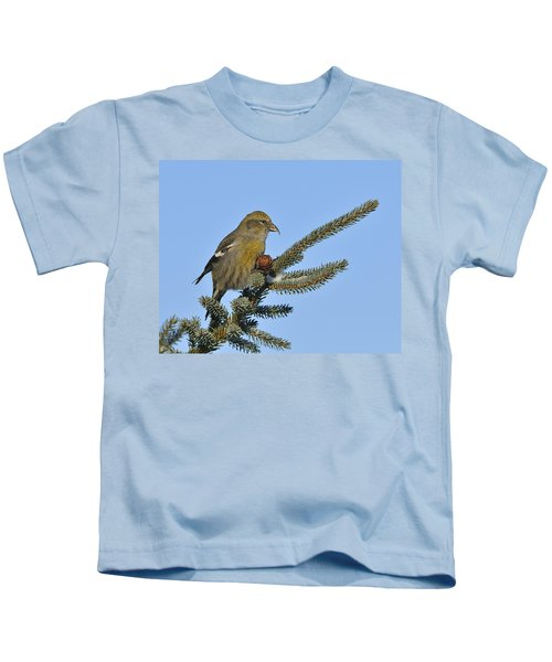 Spruce Cone Feeder Kids T-Shirt by Tony Beck