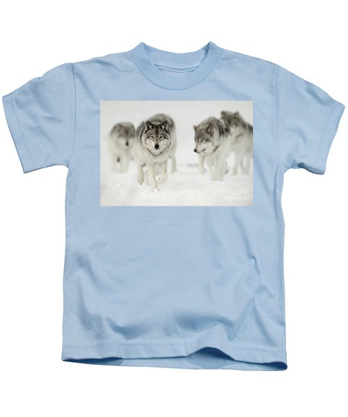 Timber Wolf Pictures 65 Kids T-Shirt