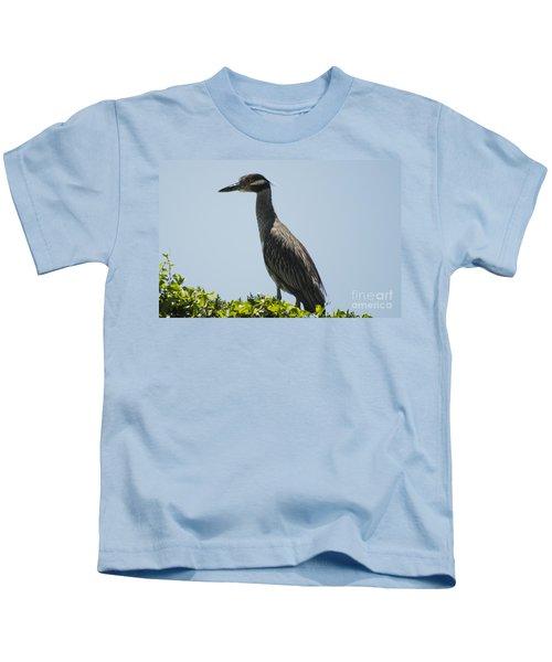 Yellow-crowned Night-heron Kids T-Shirt