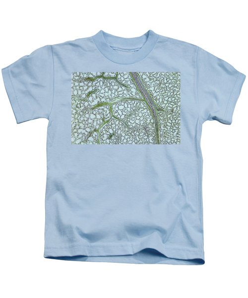 Privet Leaf Vascularization Kids T-Shirt