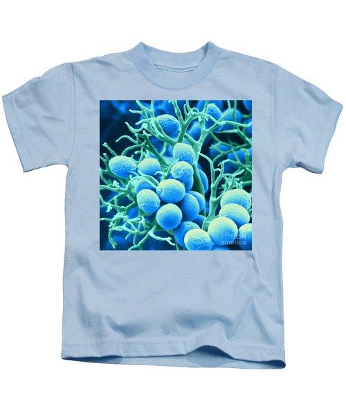 Peronospora Parasitica Kids T-Shirt