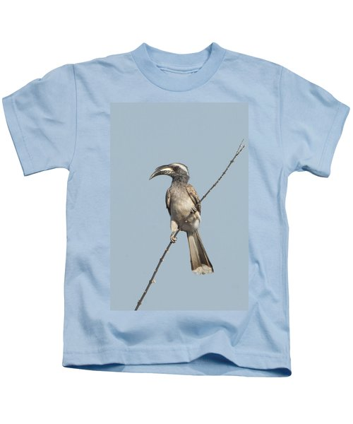 African Grey Hornbill Tockus Nasutus Kids T-Shirt by Panoramic Images