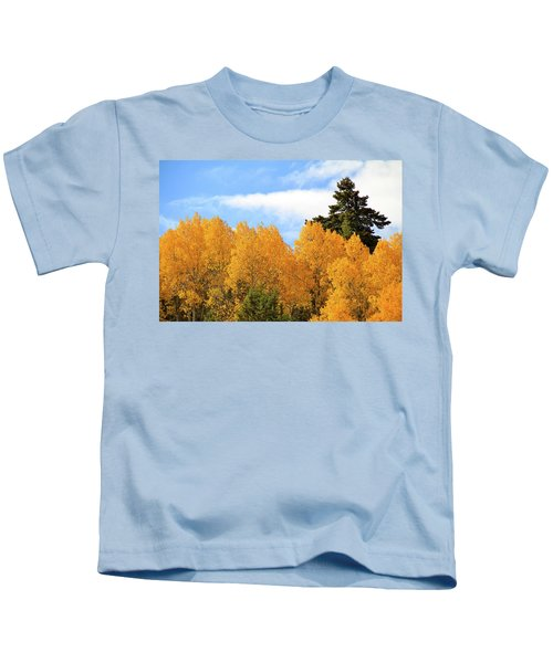 Autumn In The Owyhee Mountains Kids T-Shirt