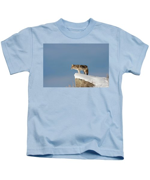 Coyote At Overlook Kids T-Shirt